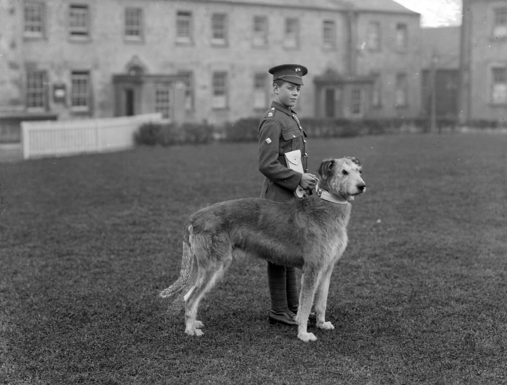 Irish Guards' Band Drummer Boy, pictured at Waterford Barracks with the regiment's mascot, an Irish Wolfhound. Image Source: National Library of Ireland on The Commons, Flickr